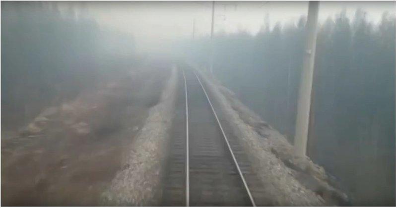 Машинисты сняли на видео, как поезд мчится через горящий лес ynews, видео, лес, машинист, поезд, пожар, россия, хабаровский край
