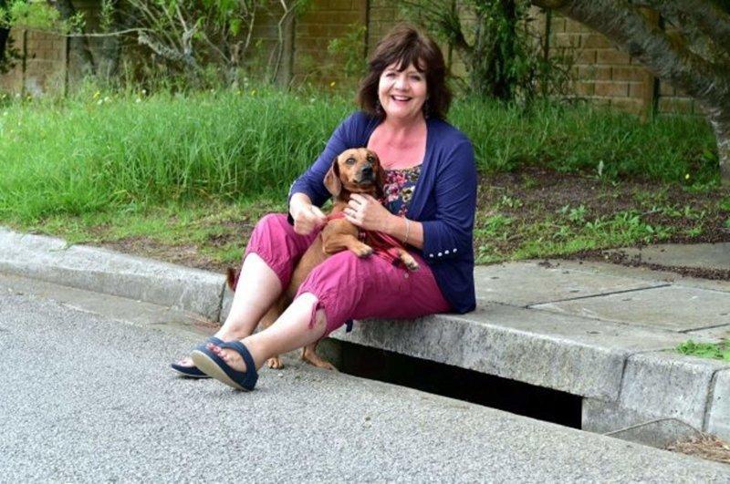 Обезумевший пёс тащил хозяйку к канализационному люку. То, что она там увидела — удивило всех! история, ребенок, спасение