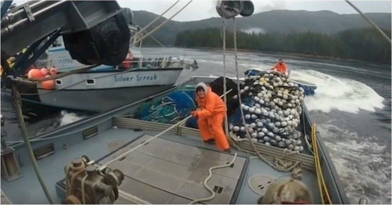 Рыбацкие войны на Аляске аляска, видео, корабль, лосось, рыба, судно, сша, территория