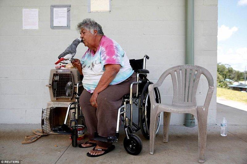 Хотя эвакуация продолжается, некоторые местные отказываются покидать свое жилье, не желая оставлять свои дома и сельскохозяйственные угодья ynews, Килауэа, вулкан, гавайи, извержение вулкана, новости, стихийные бедствия, фото