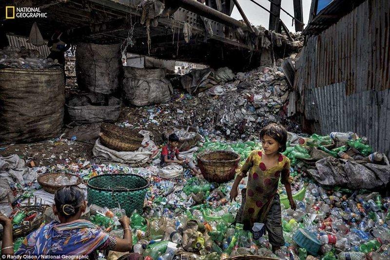 Под мостом на одном из притоков реки Буриганга в Бангладеш жители сортируют пластиковые бутылки (зеленые - в одну сторону, прозрачные - в другую). Сборщики мусора могут заработать около 100 долларов в месяц national geograhic, загрязнение моря, морские жители, охрана природы, пластик опасен, последствия, эко-система, экология