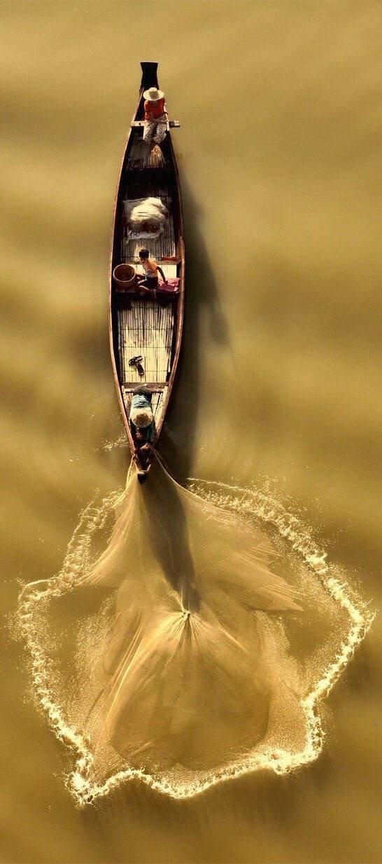 Рыболовы день, животные, кадр, люди, мир, снимок, фото, фотоподборка