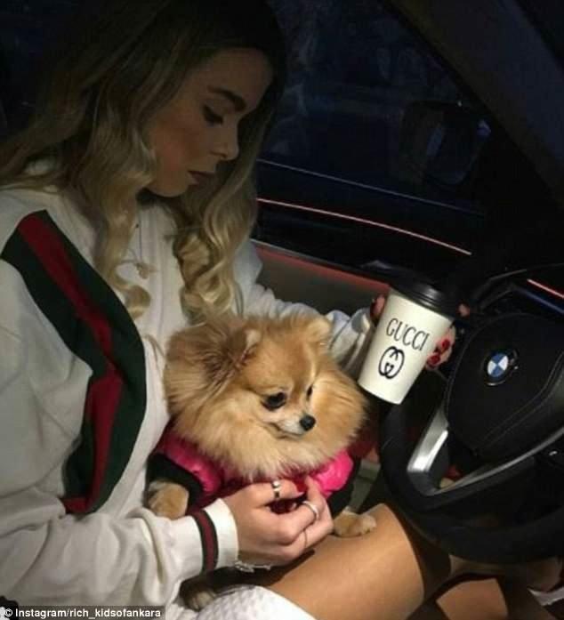 Фанатка Гуччи и ее померанский шпиц, а также BMW rich kids, Анкара, богатые дети, богатые детишки, инстаграмм, мажоры, образ_жизни, турция