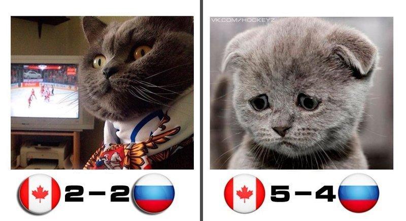 Российские хоккеисты сражались достойно, была настоящая интрига... но, увы... 2018, канада, мнение, реакция соцсетей, россия, хоккей, чемпионат мира по хоккею, юмор
