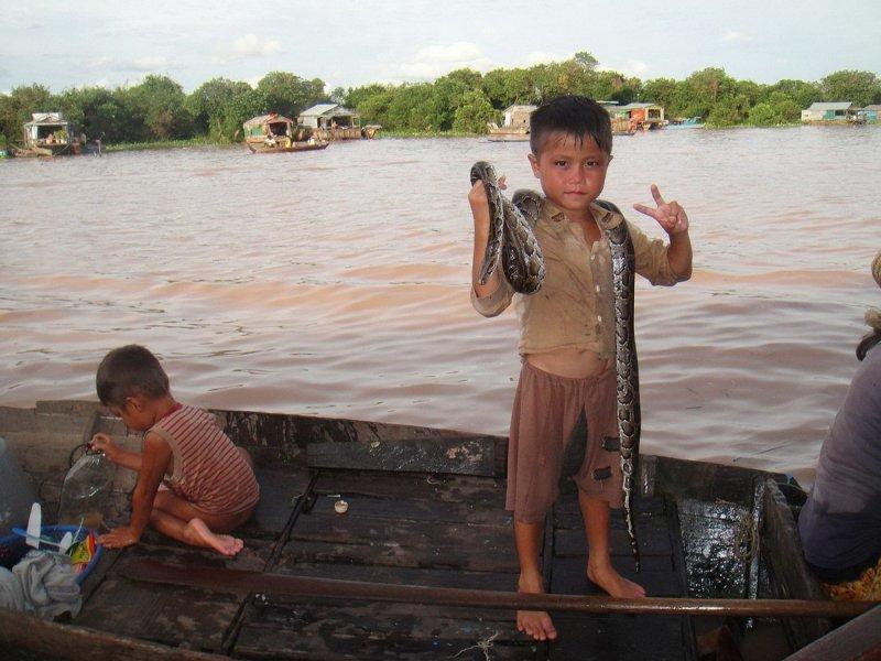 Юный укротитель змей день, животные, кадр, люди, мир, снимок, фото, фотоподборка
