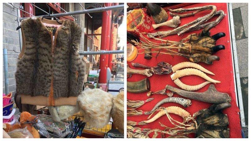 Видео: в Китае продают жилеты из кошачьего меха внутренняя монголия. китай, жилеты, китай, коготь тигра, кошачий, мех, незаконно