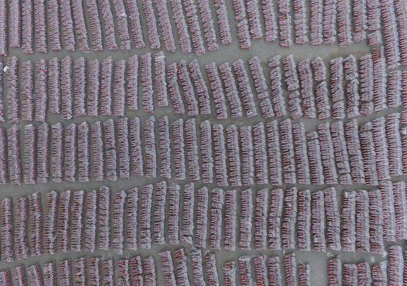 25. Велосипеды общего пользования под защитными чехлами в Гуанчжоу. китай, личное пространство, перенаселенность, повседневность, толпа, фото