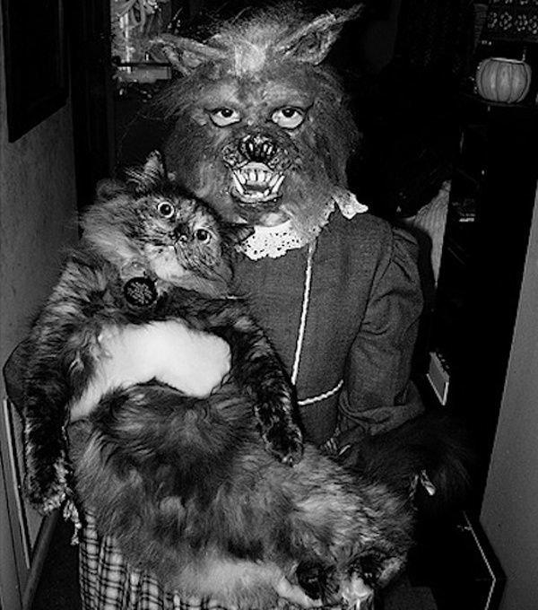 24. Девушка в костюме кошки на Хэллоуин, США, 1968 год век, мир, прошлое, снимок, событие, странность, фотография