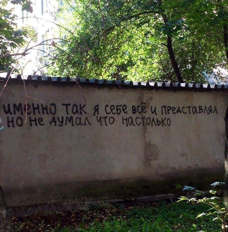 И ведь очень универсальное выражение, сразу о многом… Надписи на стенах, уличное искусство, уличные философы, философия, юмор