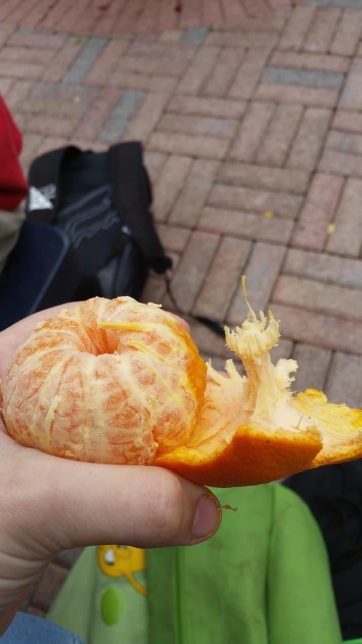 Этот удивительный мандарин чем-то похож на летающую тарелку аппетитно, блюда, вкусно, как снимать еду, продукты, слюнки текут, фото, фотографии еды