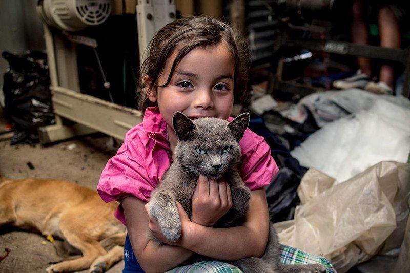 В колумбийском доме, где в месяц на семью тратят $163, любимая игрушка — кошка в мире, дети, игрушка, люди, страны