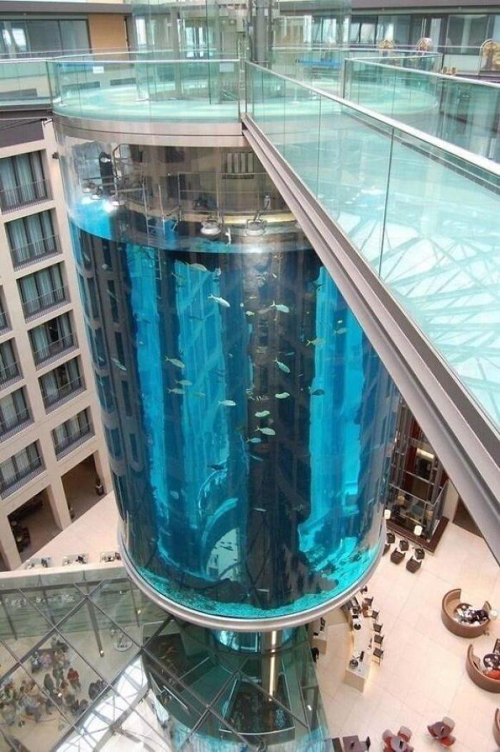 11. Этот лифт находится в огромном аквариуме в мире, дизайн, дизайнеры, красота, креатив, лифтк, фантази