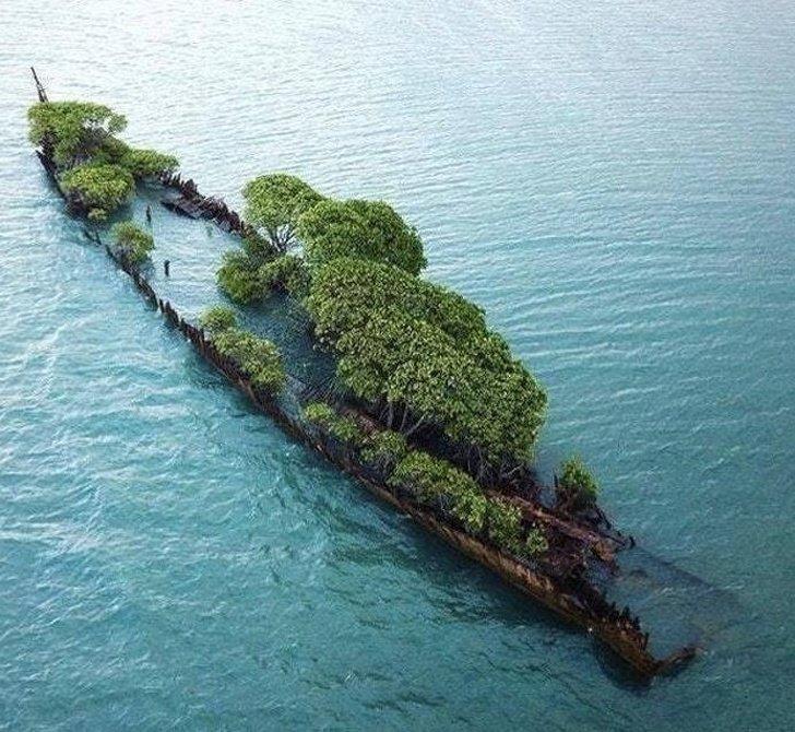 10.  Останки корабля, затонувшего в 1916 году у побережья Магнитного острова (Австралия) без фотошопа, вы не поверите, места, природа, реальность, удивительные, чудеса