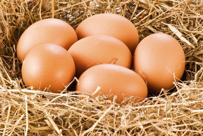 Яйца испорченные продукты, неожиданность, правила, продукты, холодильник, хранение