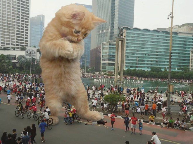 8. Я же ему ничего не сделал гигант, город, котзилла, кошка, фотоманипуляция, фотошоп, художник
