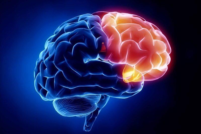 3. Мозг человека работает только на 10% — ложь интересно, любопытно., факты