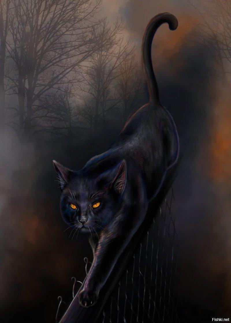 Картинки с черным котом изящные, вакансии делаем открытку