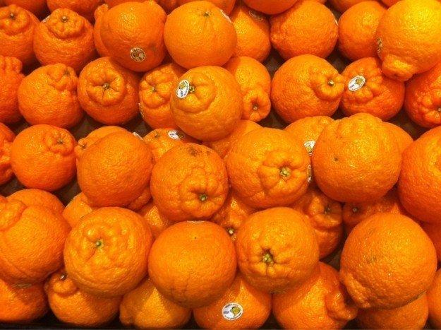 19. И мандарины, которые напоминают что-то очень физиологическое в мире, еда, овощи, подборка, прикол, фрукты