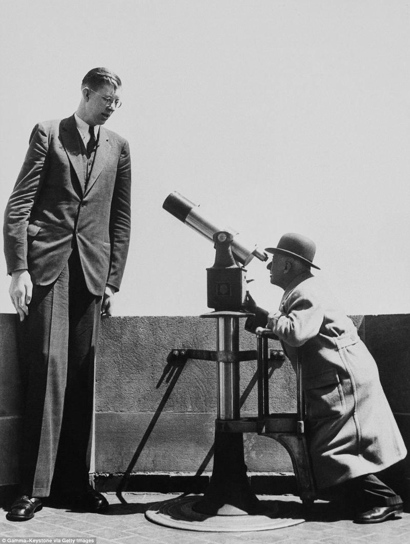 """漫画的画面:一个人看到""""温和的巨人""""肢端肥大症,望远镜,一个巨大的肿瘤,纪录,吉尼斯纪录,吉尼斯纪录保持者,是最高的,最高的男人"""