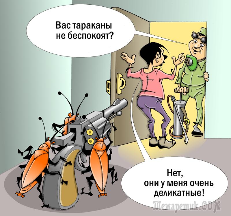 юмор картинки про тараканов изначально эта программа