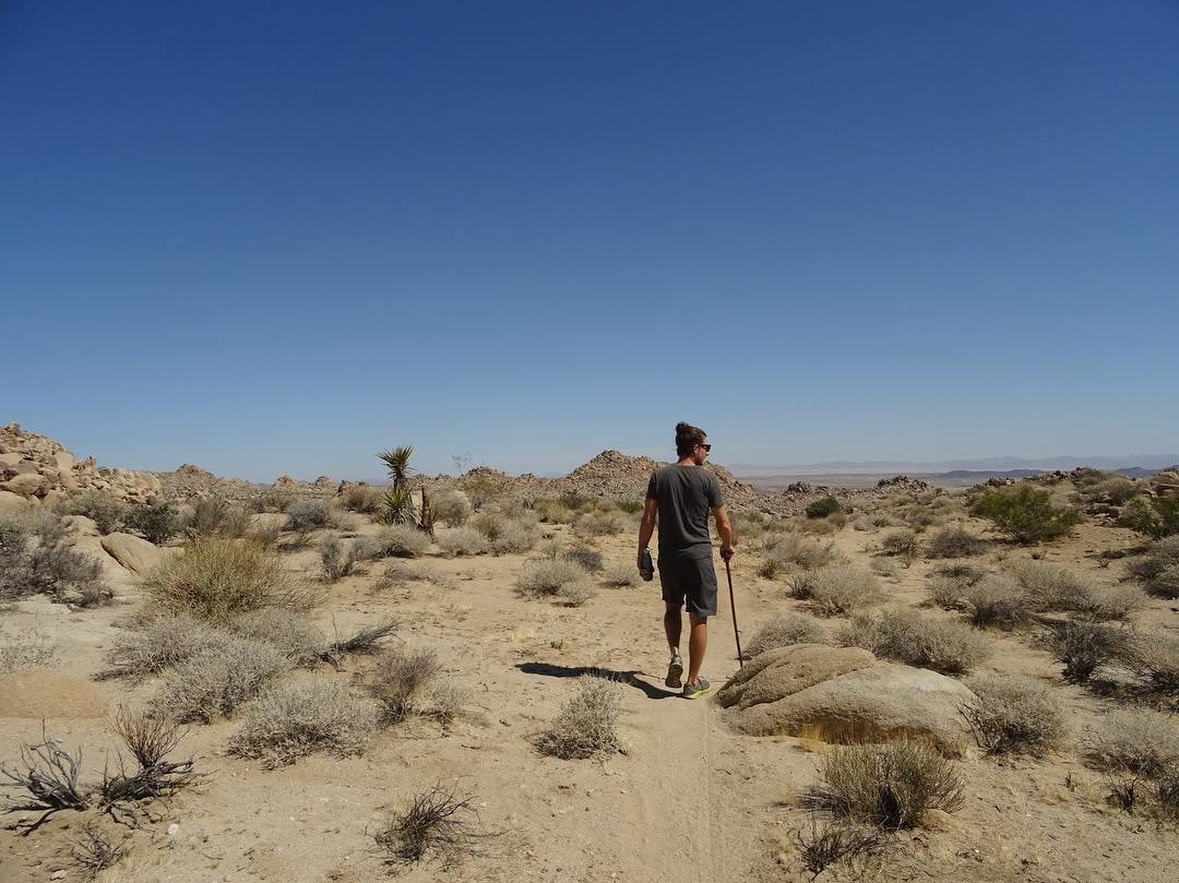 survive desert essay Unlike desert plants and animals, humans have not developed the extreme protective mechanisms needed to truly survive in the desert.