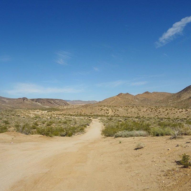 4 дня невыносимого ужаса: история спасения туристки в пустыне в мире, история, люди, пустыня, спасение, туристка, ужас