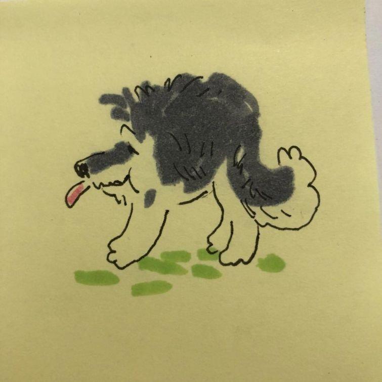 Для других пользователей это фото явилось вдохновением животные, панорамный снимок, собака, фото, юмор