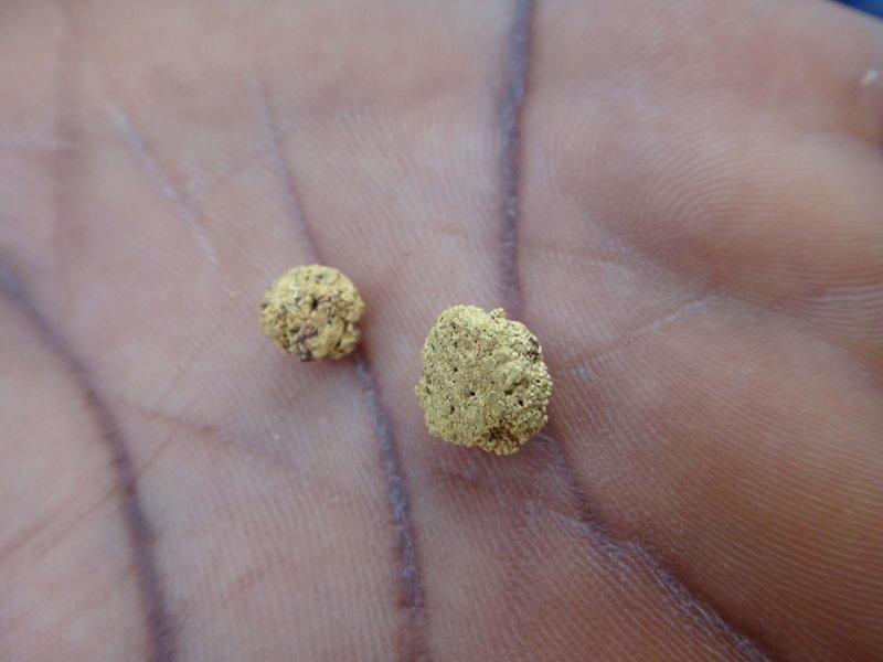 Как добывают золото в Африке африка, добыча золота, золото