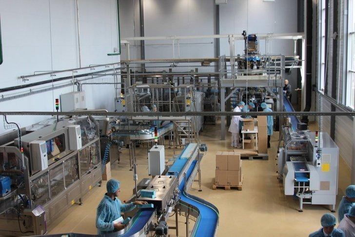 Завод по производству детского питания открылся в Подмосковье Хорошие, добрые, новости, россия, фоторепортаж