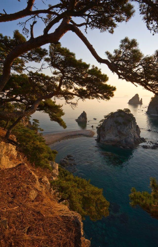 Мыс Сосновый (Дальневосточный Морской заповедник, Японское море) Майские картинки, природа, фото