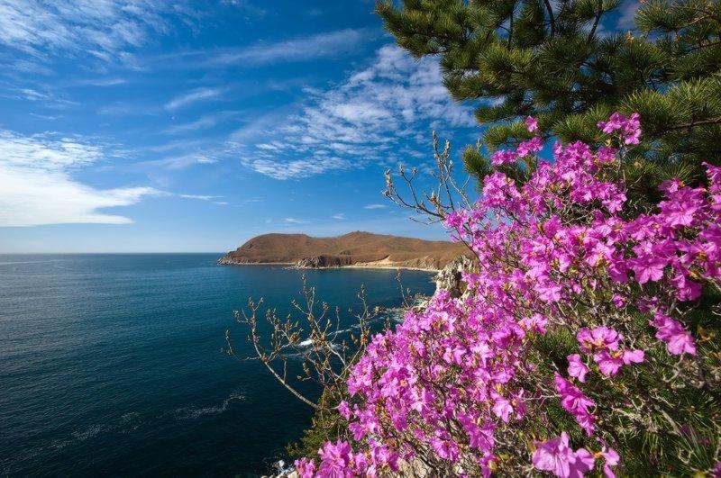 Бухта Ежовая, Японское море Майские картинки, природа, фото