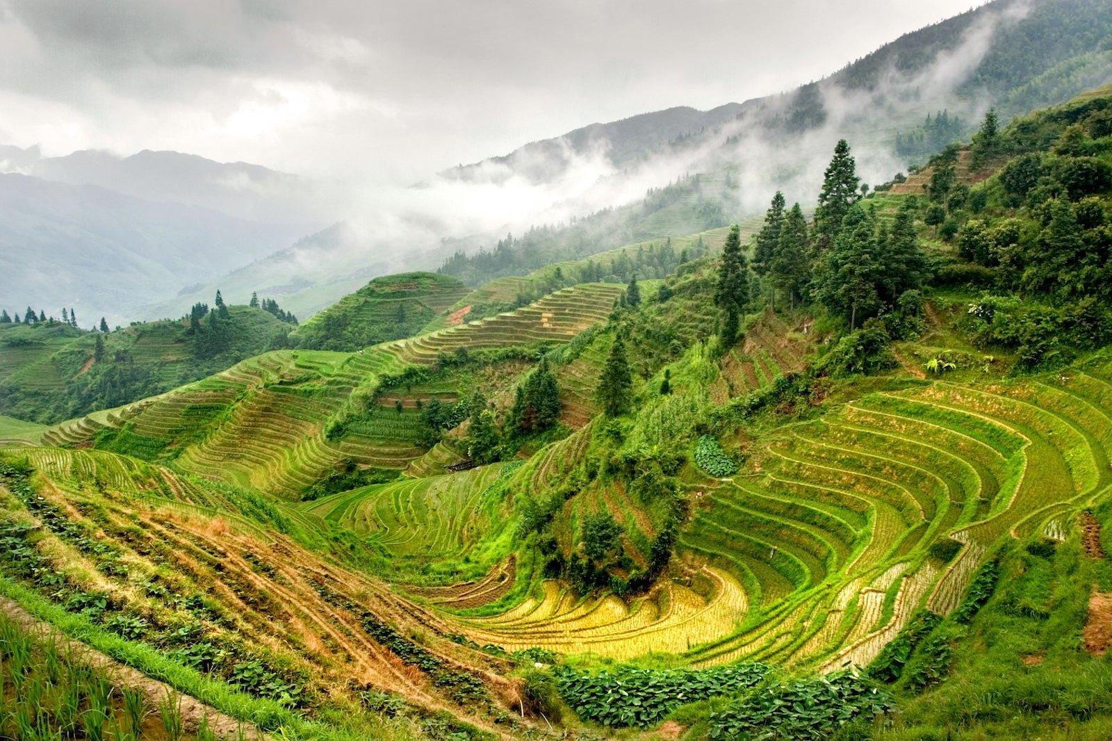 Рисовые террасы Лонгшэнь, Китай красивые места, мир, природа, путешествия, сказка