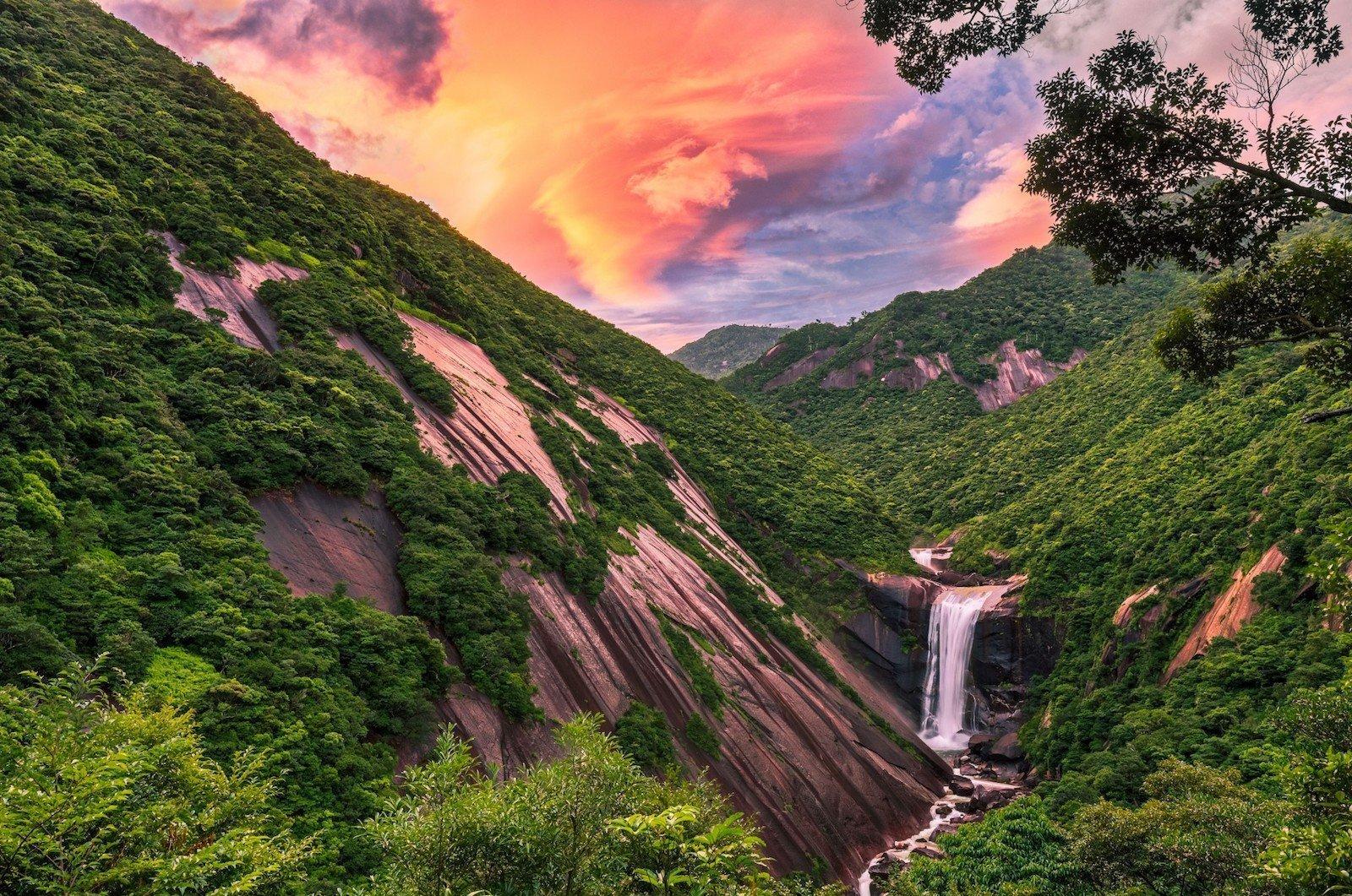 Остров Якусима, Япония красивые места, мир, природа, путешествия, сказка