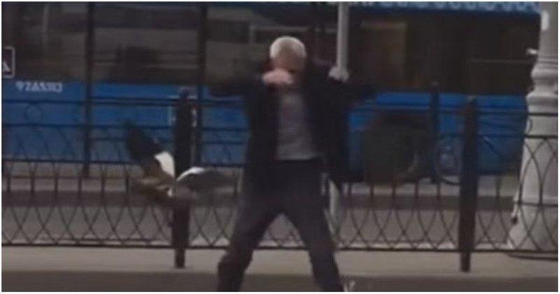 В Москве таксист решил помочь утке с утятами перейти дорогу, но в итоге спасался от нее бегством видео, животные, маты, москва, прикол, речной вокзал, утки, юмор
