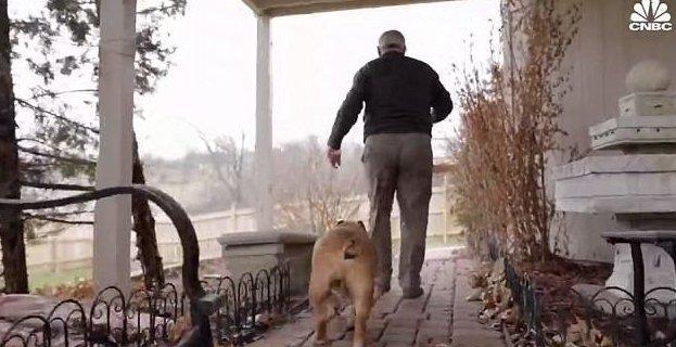 Бизнесмен, создавший искусственные собачьи тестикулы, заработал на них миллионы бизнес, бизнес-идея, бизнес-успех, искусственные тестикулы, кастрация, необычно, оригинально, собаки