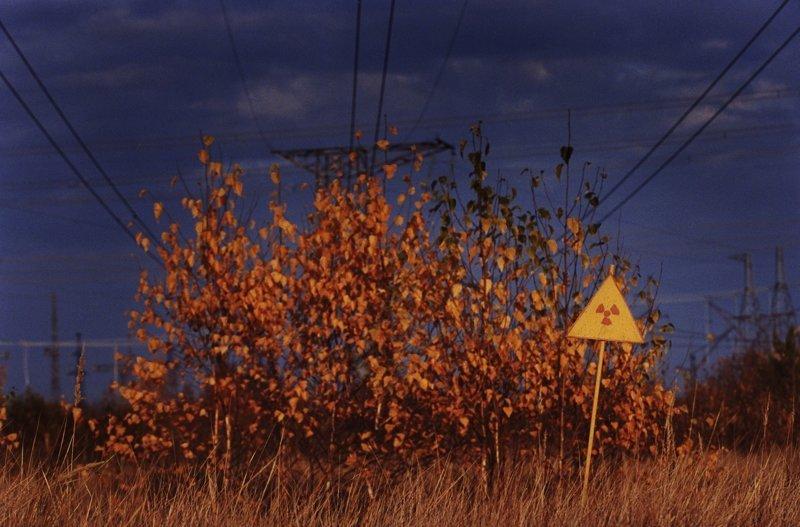 Рыжий лес в Зоне Отчуждения охвачен огнём ynews, Рыжий лес, Чернобыль, интересное, пожар, фото, чаэс