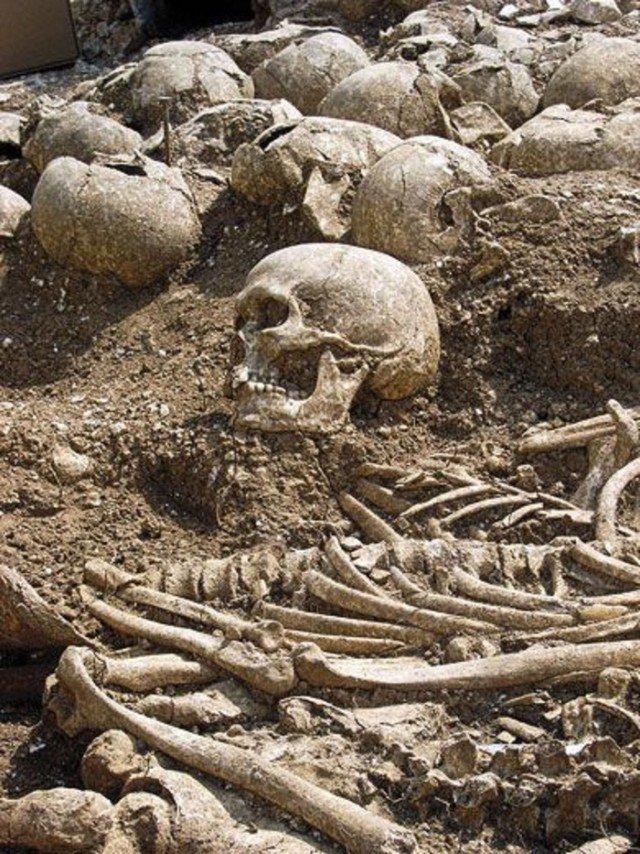 Много человеческих костей. И да, именно в мусорной свалке. интересно, история, мумии, наука, скелеты