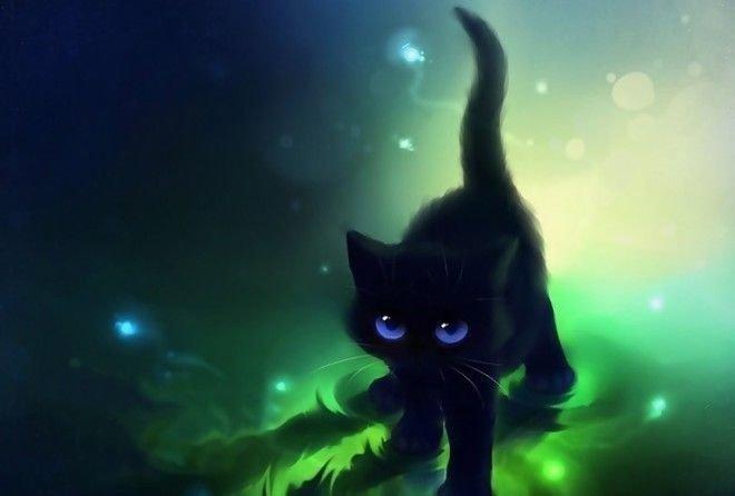 22 оттенка черного животные, коты, факты