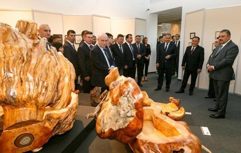 Министр обороны Шойгу открыл выставку художественных работ ynews, выставка, интересное, искусство, министр обороны, фото, шойгу