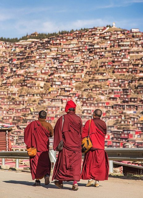 Мы вас заставим любить родину! Тибетских монахов отправили на специальные курсы ynews, КНР, курсы, родина, тибет