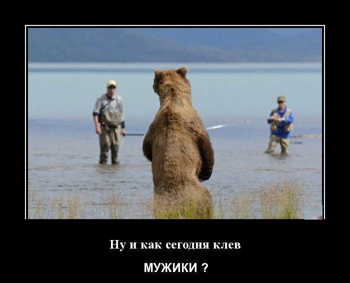 Демотиваторы четверга демотиваторы, рыба, рыбалка