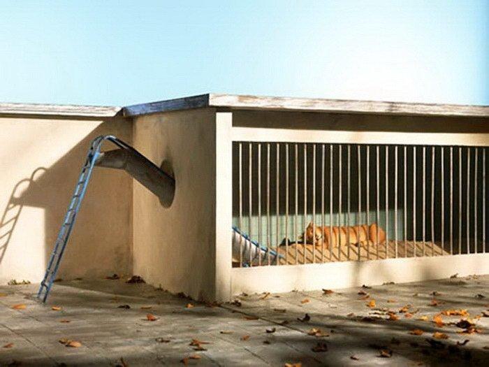 Frank Kunert Коллажи, интересное, искусство, реальность, художники