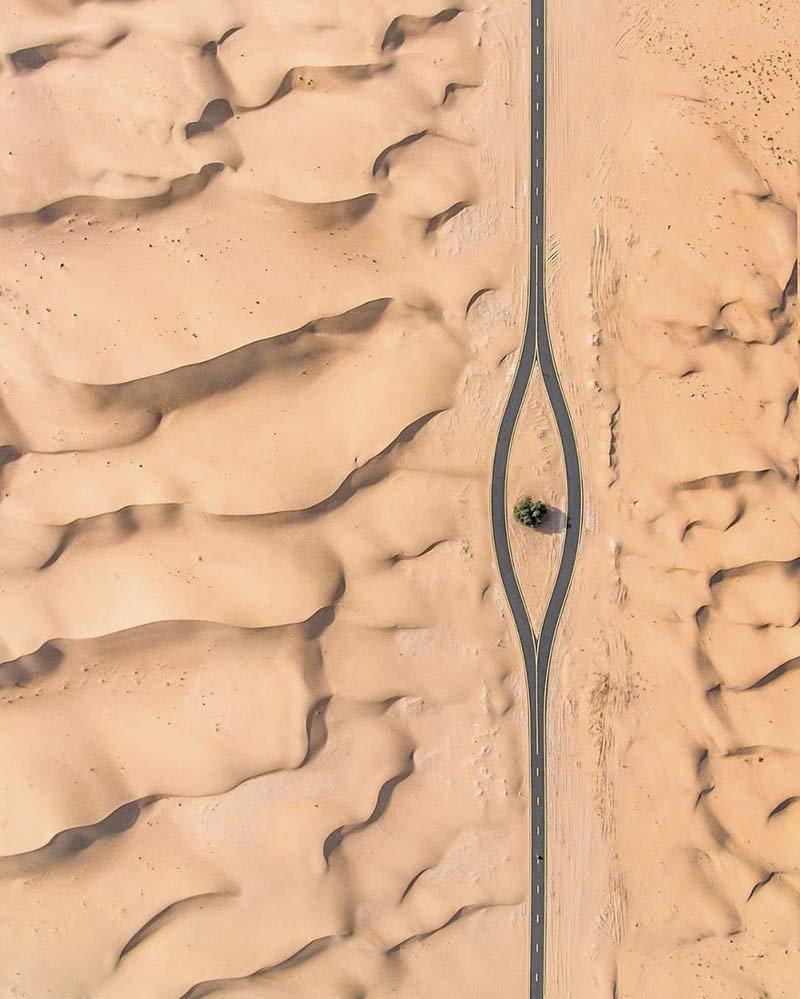 1. Дорога и одно единственное дерево (Дубай, ОАЭ) абу-даби, в мире, дубай, красота, природа, пустыня, фотограф