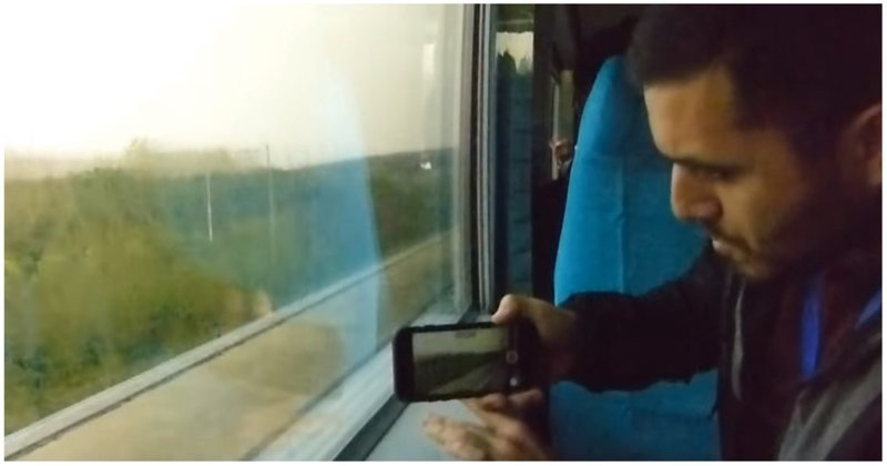 Как разъезжаются поезда, идущие со скоростью свыше 300 км/ч в мире, видео, интересное, китай, поезд, скорость