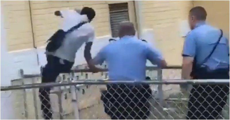 Темнокожий Марио убегает от любителей пончиков видео, задержание, побег, полиция, прикол, сша, юмор