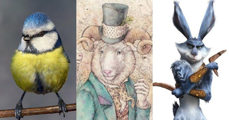 Смелые зайцы и умные овцы: мифы и парадоксы животного мира животные, заяц, птицы, синица, слоны, сова, факты