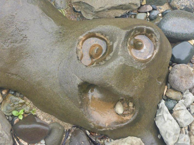 Вот так выглядит сам герой фотошоп-баттла булыжник, камень, лицо, фотожаба, фотошоп, юмор