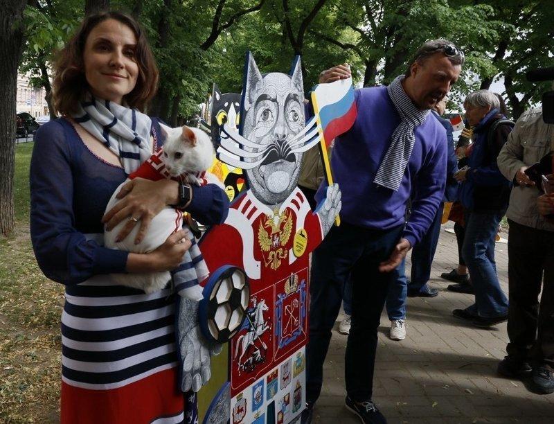 За Россию здесь выступает вот такое чудо... ynews, искусство, коты, петербург, футбол, художники, чм-2018