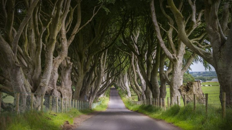 3. Королевский тракт замки, игра престолов, места съемок, пейзажи, сериал, фэнтези