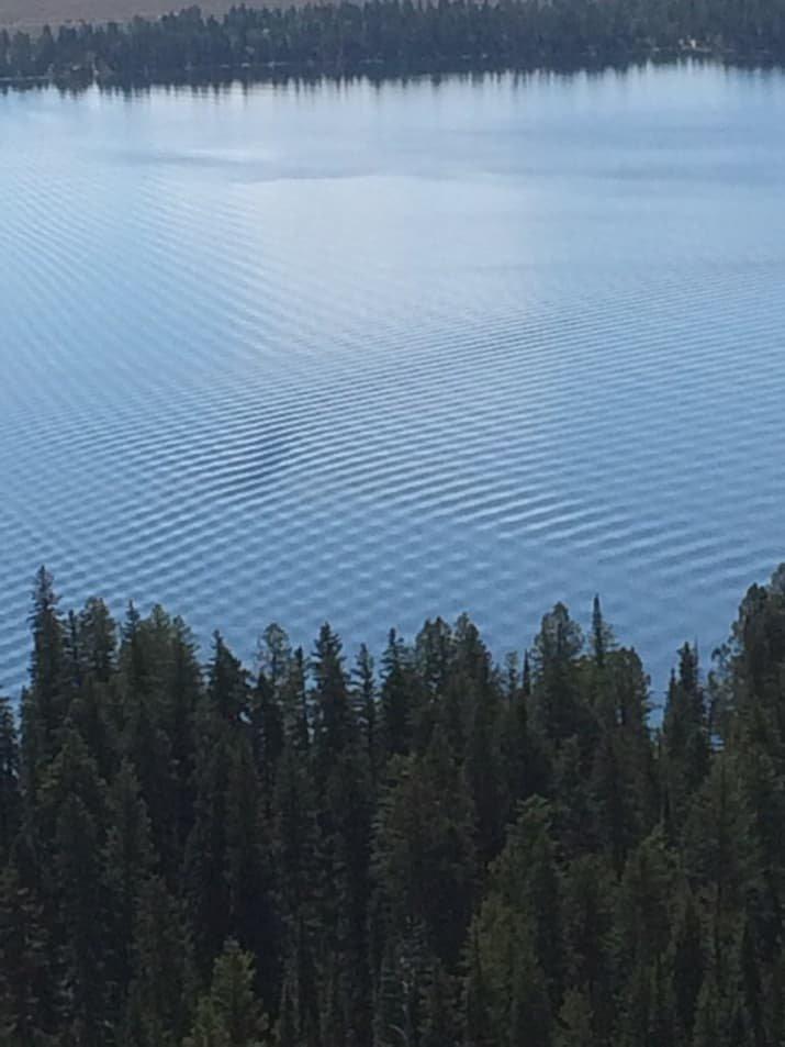Идеальная рябь на озере просто гипнотизирует для перфекционистов, идеальное, интересно, необычно, необычные вещи, перфекционизм, совершенное, совершенство
